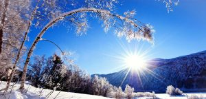 Sunny Winter Day HD Desktop Background