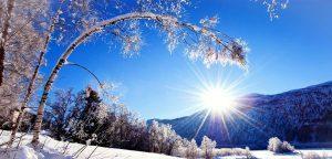 Sunny Winter Day HD Desktop Background